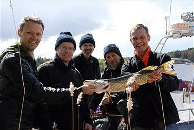 Bla Felix Herngren, Lennart Jähkel, Johan Ulveson och Måns Herngren. Sjönsuger foto:kanal 9
